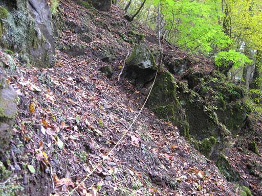 林道から垂れるロープ