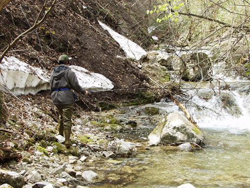 渓流釣り 渓流ルアー